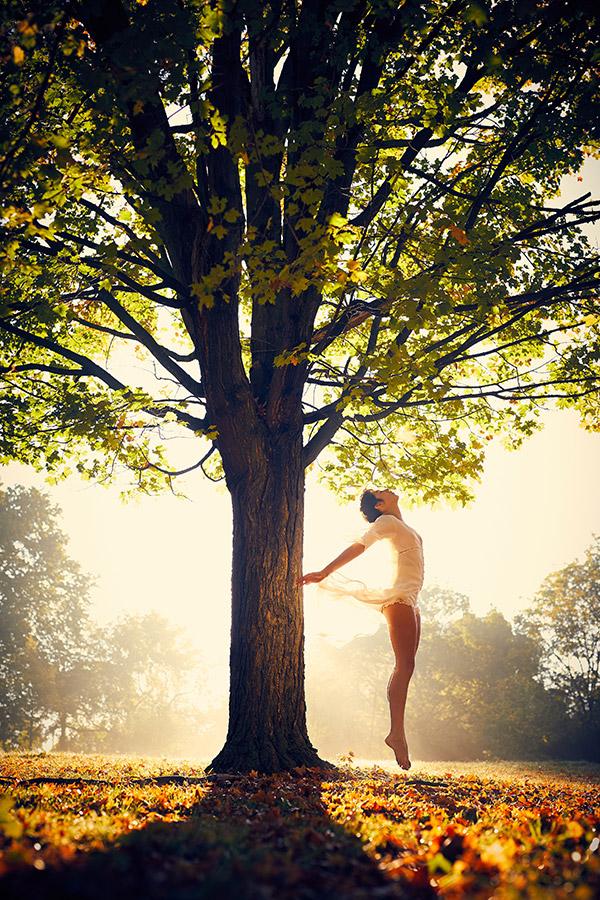 Hast du schon einmal unter einem Baum getanzt?